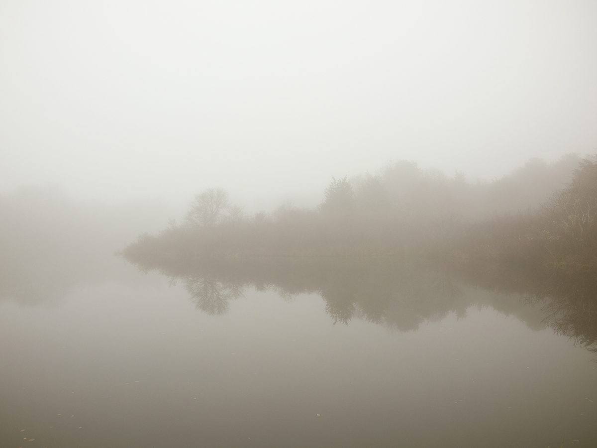 Fog-and-reflection