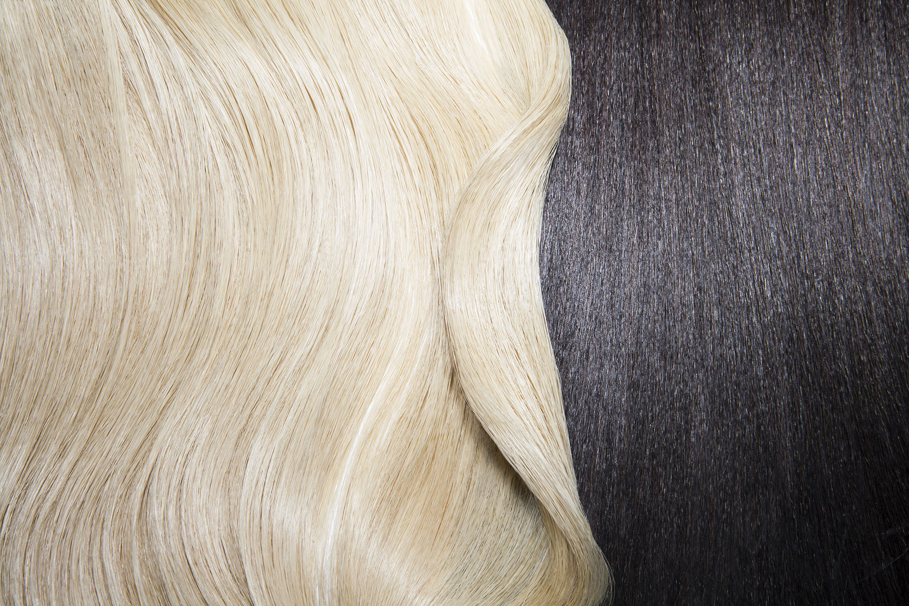 Still life of two different hair colors.